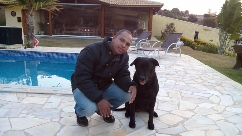 Adestradores de Labradores Rio Pequeno - Adestrador e Hotel para Cães