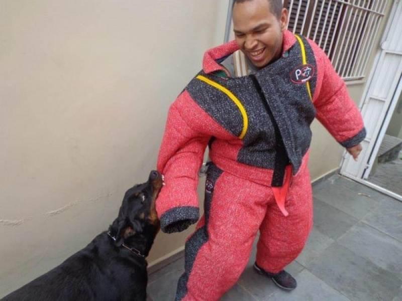 Aluguel para Cão de Guarda Butantã - Treinador de Cão de Guarda