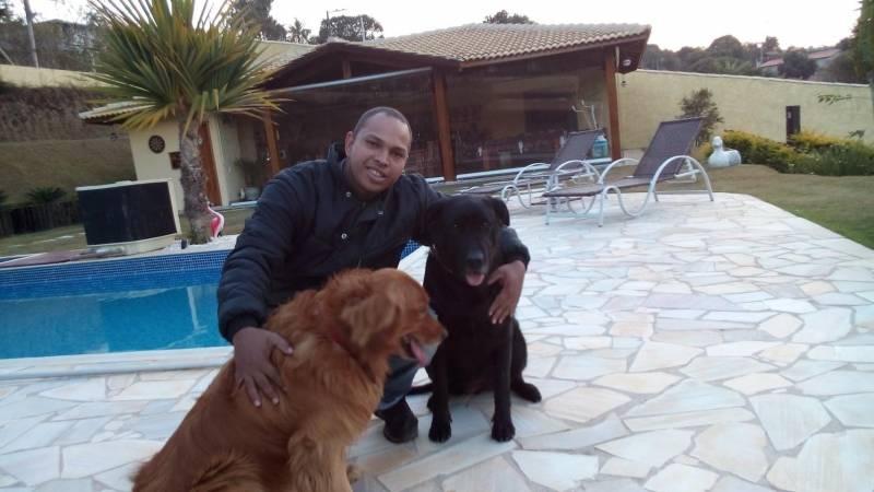 Creche para Hospedagem de Cães Carapicuíba - Creche e Day Care para Cães