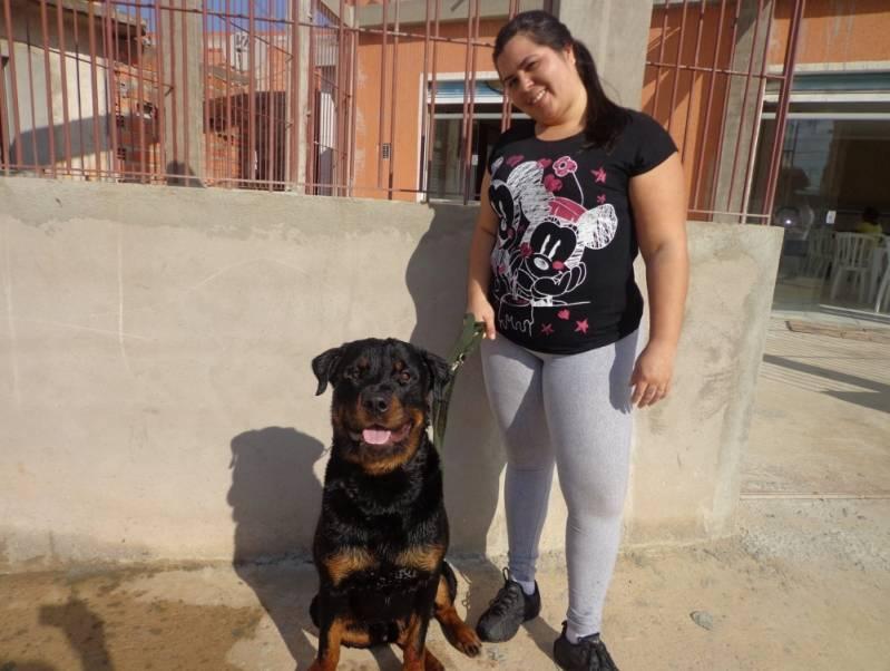 Quanto Custa Adestrador Canino Morumbi - Adestrador e Hotel para Cães