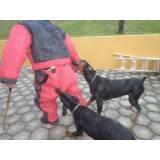 adestramento cães de guarda Bom Retiro