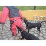 adestramento para cães de guarda Bom Retiro