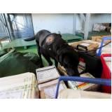 treinador de cães farejadores de droga