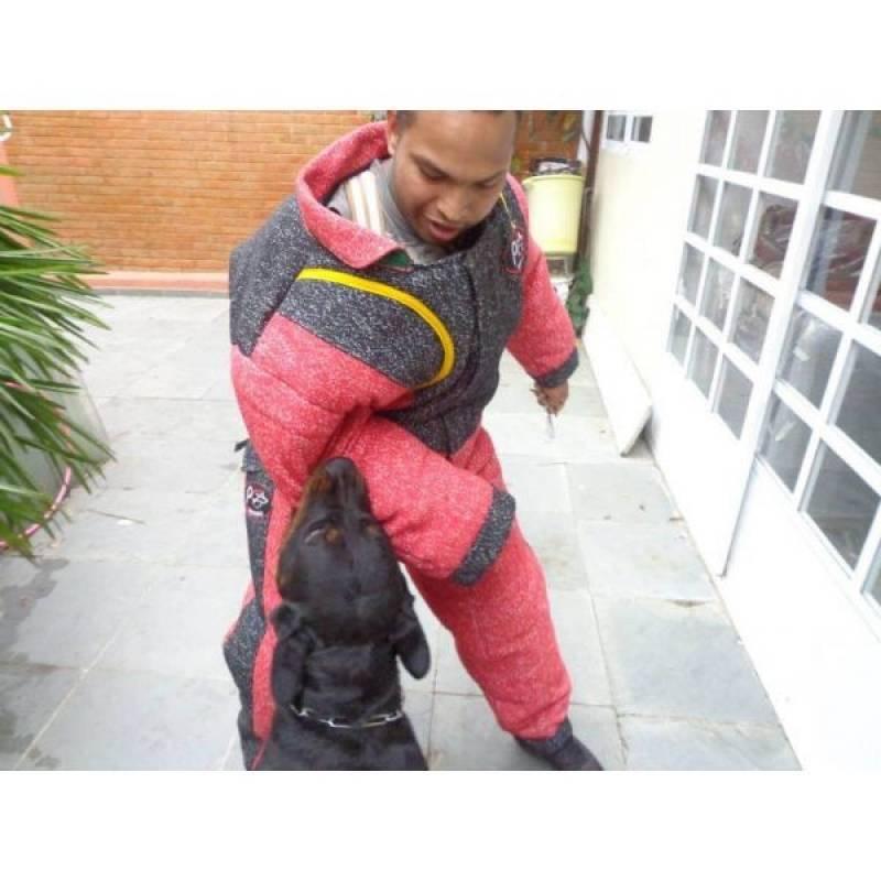 onde encontrar cães de guarda para aluguel Vila Olímpia