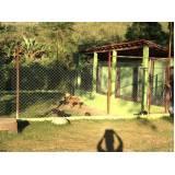 orçamento de adestrador e hotel para cães Aldeia da serra -