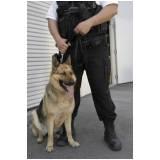 orçamento de serviços de cães farejadores Itapevi