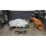 orçamento de treinador de cães farejadores de droga Carapicuíba