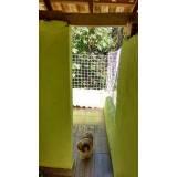 quanto custa adestrador e hotel para cães Higienópolis