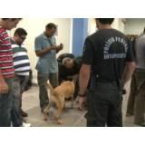 quanto custa cães farejadores aeroporto Jaguaré