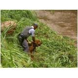 quanto custa cão farejador de pessoas perdidas Rio Pequeno