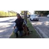 locação de cachorro de segurança