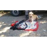 serviços de cães farejadores Morumbi