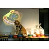 treinadores de cães farejadores de droga Granja Viana