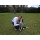 treinamento de cães de raça valor Cotia