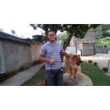 locação de cães de segurança adestrados Butantã