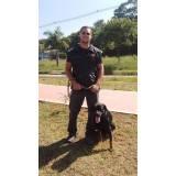 orçamento de adestrador canino Santana de Parnaíba